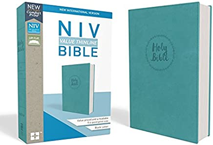Holy Bible: New International Version, Value Thinline, Imitation Leather, Torquoise, Comfort Print