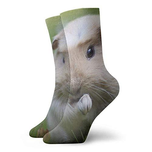 QUEMIN Conejillo de Indias en la ley Calcetines deportivos de algodón de ocio Calcetines de compresión clásicos suaves Calcetines deportivos largos para hombres Mujeres Regalo de vacaciones
