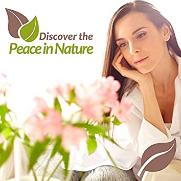 Discover The Peace In Nature