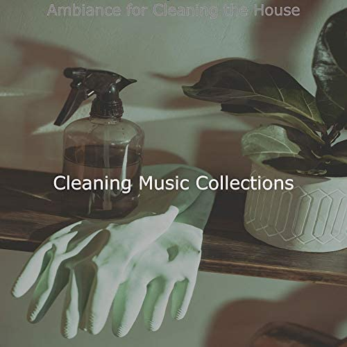 Cleaning Music Collections