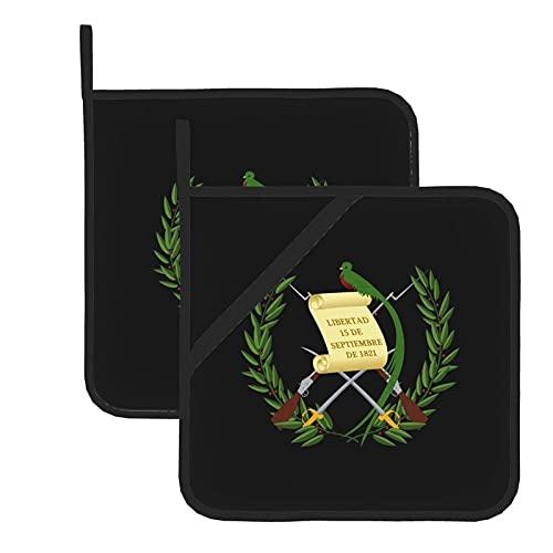 AOOEDM Guatemala Flagge Symbol Topflappen 2er Set, Hitzewiderstandsfähige Küche rutschfest Bedruckt Kochen Grillen Backen Mikrowelle