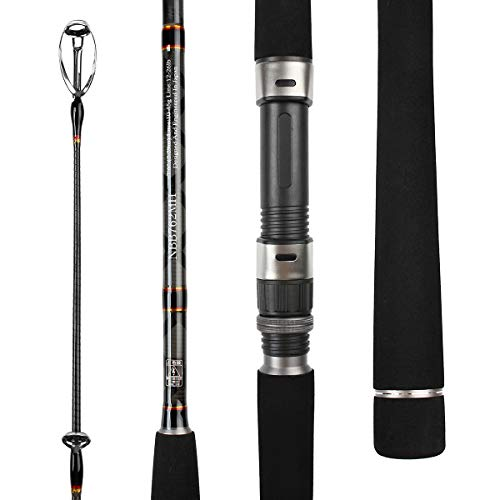 Top 10 Best Noeby 2 Piece Fishing Rod Comparison