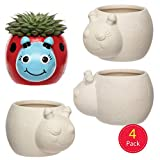 "Baker Ross Keramik-Blumentöpfe ""Marienkäfer"" für Kinder - Kreatives Bastelmaterial zum Dekorieren (4 Stück)"
