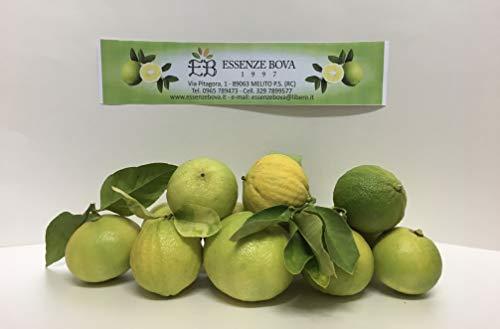 Bergamotto di Reggio Calabria frutto fresco (1 confezione da 10 kg-Buccia edibile)