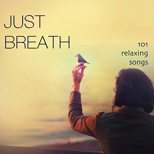 Just Breath - Relaxing Music Sound Therapy with Delta Waves and Isochronic Tones for Wellness, Pure Massage, Yoga for Healing, Mindfulness Meditation, Brain Stimolation, Stress Relief, Spirit Healing