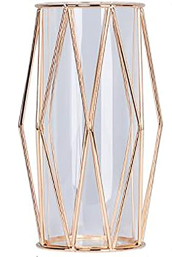 Momo no Hana ダイヤモンド型 花瓶 金属枠 フラワーベース 花器 試験管 北欧 インテリア 金属 ガラス ゴールド 22cm×10cm×10cm