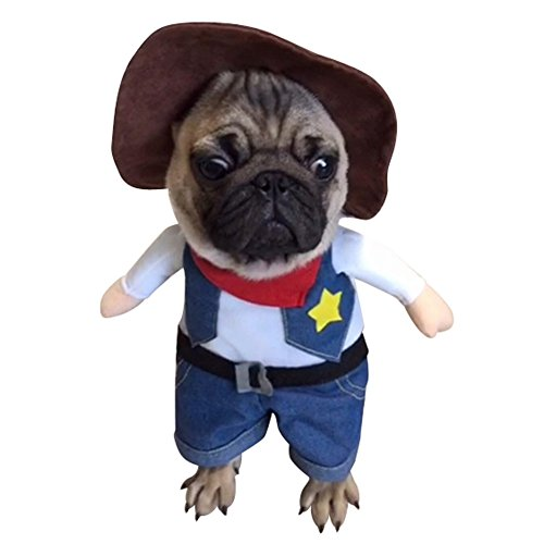 NACOCO Cowboy Dog Costume with Hat Dog Clothes Halloween Costumes for Cat and Small Dog (Large)