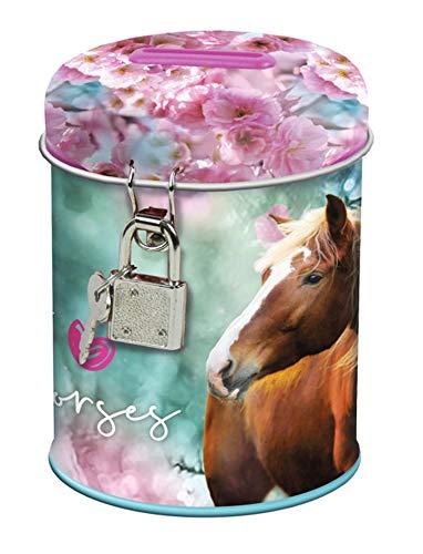 Theonoi Kinder - Spardose Sparbuchse Schatzkiste Sparschwein Dose Box aus Metall verschidene Motive Pferd Horse Motiv tolles Geschenk (Pferd 02)