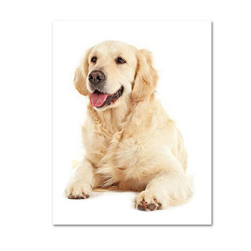 Juabc Moderne Hundeposter Und -Drucke Tiere LeinwandmalereiHaustiere WandbilderFürHundezimmerPet Shop Decor50X70Cm Ohne Rahmen