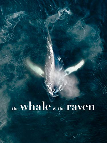 The Whale & the Raven [OmU]
