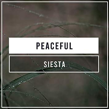 #Peaceful Siesta
