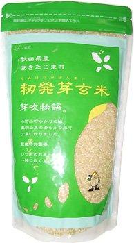 JAこまち あきたこまち 籾発芽玄米「芽吹物語」1袋700g×3袋入セット 令和2年産