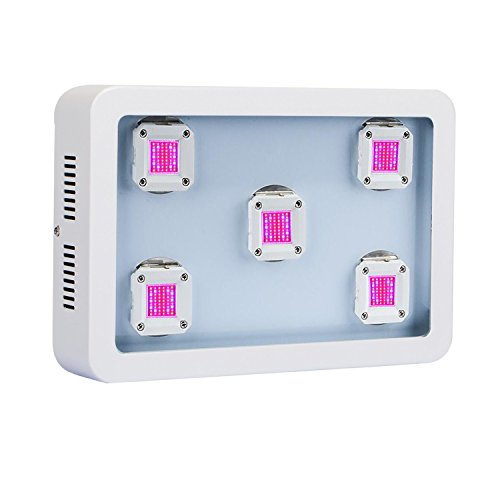HollandStar LED Grow Light Full Spectrum 1000 Watt/1200W for Indoor Plants Veg and Flower (COB-X5(1000W))