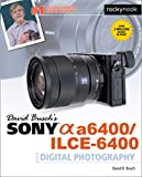 David Busch's Sony A6400/ILCE-6400 Guide to Digital Photography (The David Busch Camera Guide)