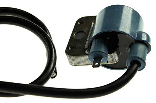 externe 12 V bougie voor Italiaanse 2- en 4-takt scooters.