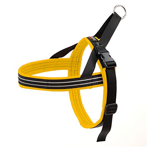 ComfortFlex Sport Harness, Medium/Large, Saffron
