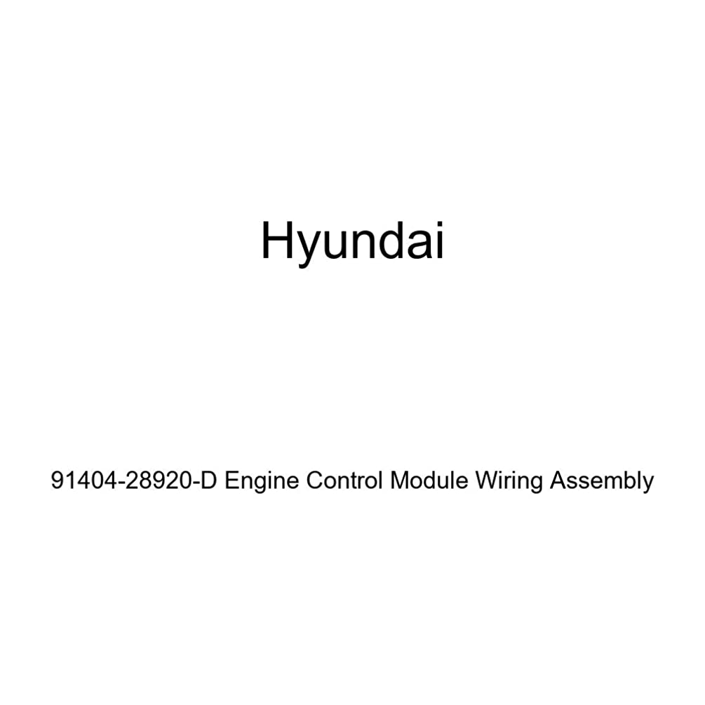 Genuine Hyundai 91404-28920-D Engine Control Module Wiring Assembly