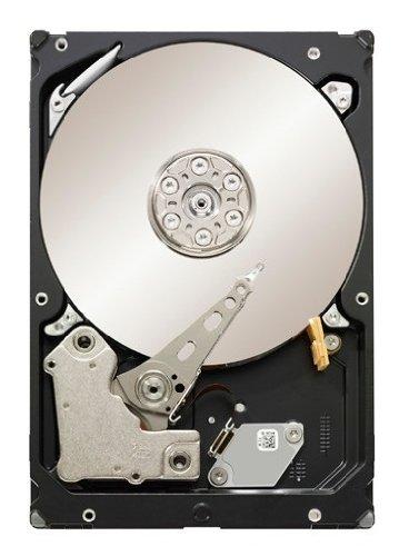Seagate Constellation ES ST31000524NS Interne Festplatte 1TB (8,9 cm (3,5 Zoll), 7200 rpm, 8,5 ms Zugriffszeit, 32MB Cache)