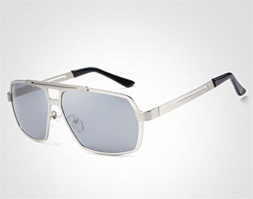 YL Grandes Gafas De Sol Marco, Silver,Silver