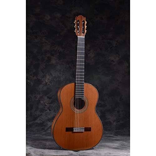Guitarra Clásica MARTÍNEZ modelo ESPAÑA ES-10C Tapa de Cedro, TODO MACIZO