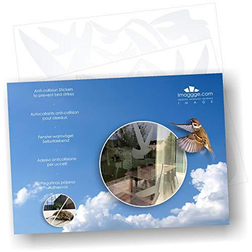 Decooo.be Greifvogel-Silhouetten, selbstklebend, in verschiedenen Farben verfügbar, verhindert Vogelschlag, 17 Warnvögel - Sablés-dépolis-translucides