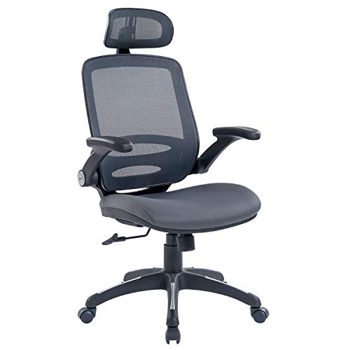 RYDESIGN Office Chair Ergonomic Mesh Computer Chair High Back Desk Chair with Adjustable Headrest and Flip-Up Armrests, Gray