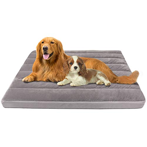 Large Dog Bed for Large Medium Small Dogs 47 Inch Soft Pet Foam Bed Mat Washable Anti Slip Sleeping Mattress Cuddler Pad with Thicker Removable Cover Grey XL Beds