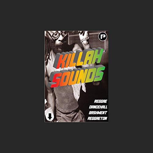 Un'eccellente collezione di suoni del sistema audio Reggae sotto forma di successi di batteria, linee di basso, effetti sonori e Dj Tools per creare l'ultimo Reggae Dub.| Download