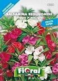 Sementi da fiore di qualità in bustina per uso amatoriale (BALSAMINA BEGLIUOMINI DOPPIA IN MISCUGLIO)