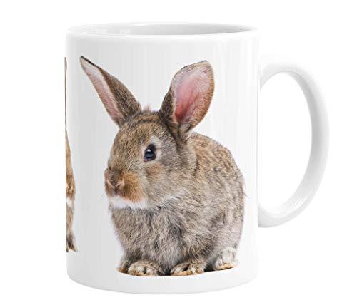 Merchandise for Fans Becher aus Keramik - 330 ml Motiv: Kaninchen zwei braune Jungtiere (02)