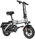 Bicicleta eléctrica Bicicleta eléctrica por la mon Adultos bicicleta eléctrica plegable Ebikes Ebike Ligero 350W 48V 18.8Ah Con 14 pulgadas de pantalla LCD Tire & Con Guardabarros para los senderos de