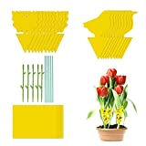 30 trampas amarillas adhesivas, trampas para moscas y moscas, para plantas de interior, pegatinas para atrapar moscas, pegatinas amarillas adhesivas, trampas para moscas, trampas para insectos