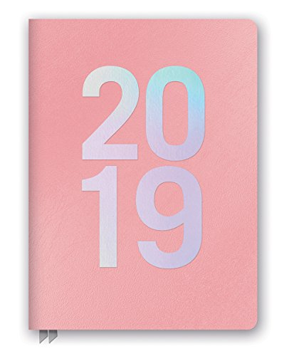 Orange Circle Studio 2019 Large Leatheresque Weekly Agenda, August 2018 - December 2019, Pink