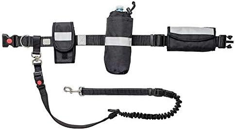 Waist Belt Bungee Leash Retractable Fashionable Outlet sale feature Dog Free Sho Hands