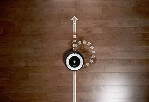 IRobot Roomba 691 Saugroboter (hohe Reinigungsleistung mit Dirt Detect, reinigt alle Hartböden und Teppiche, geeignet bei Tierhaaren, WLAN-fähig)