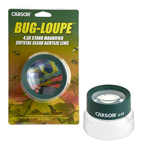 Carson Kids BugLoupe 4.5X Pre-Focused Stand Magnifier Loupe for Viewing Insects, Plants, Coins, Stamps, Maps, Fine Print and Wildlife (HU-55)
