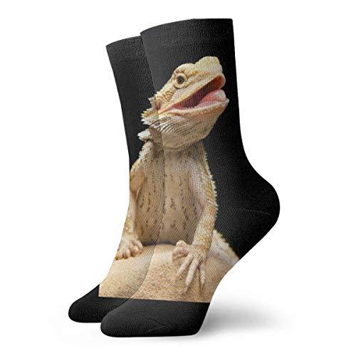 Bearded Dragon Lizards Crew Socks Chaussettes de Fantaisie pour Hommes et Femmes