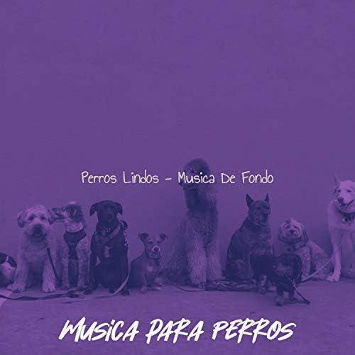 Musica para Perros
