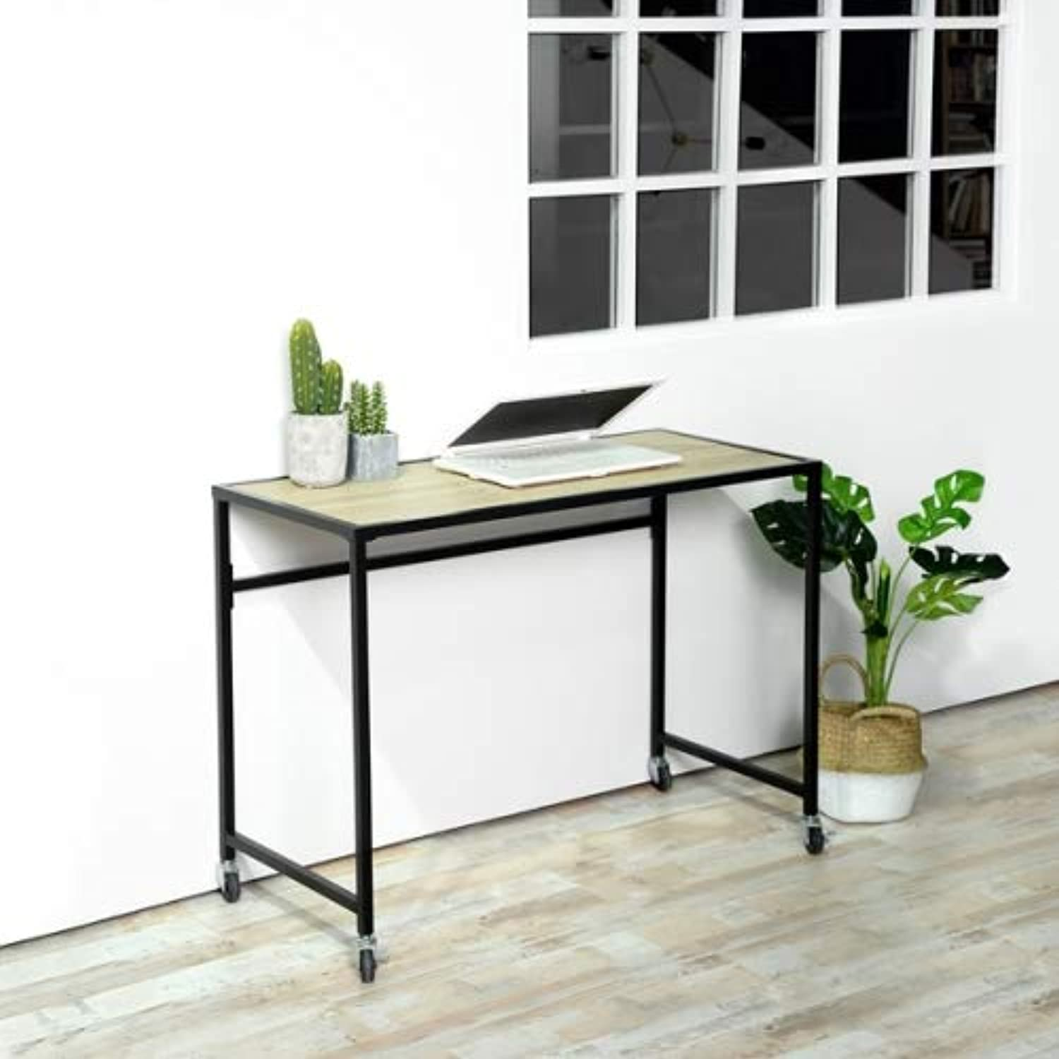 ZF Collections Wakaia Computer Writing Desk with Wheels