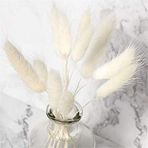 Artificial and Dried Flower 50Pcs Natural Dried Flowers White Flowers Colorful Fake Rabbit Tail Grass Foxtail Bouquet Long Bunches