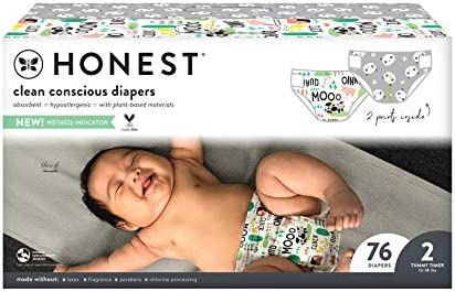 The Honest Company Club Box Clean Conscious Diapers Pandas Barnyard Babies Size 2 76 Count Packaging product image