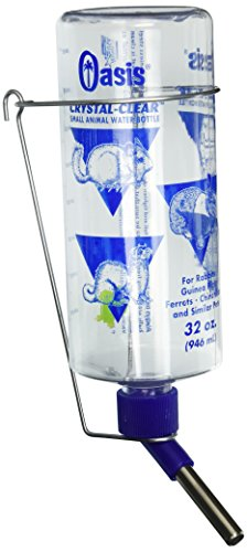 Kordon/Oasis (Novalek) SOA80800 Rabbit Water Bottle, 32-Ounce, Clear