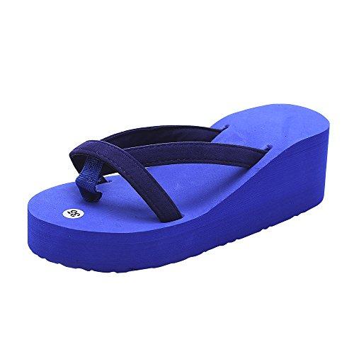 WWricotta Women's Summer Fashion Slipper Flip Flops Beach Wedge Thick Sole Heeled Shoes