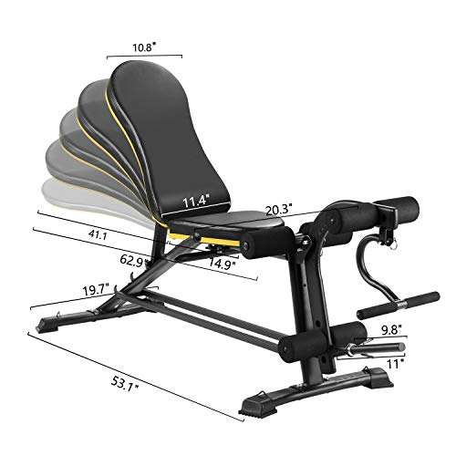 ZENOVA Adjustable Weight Bench, Flat Incline Decline Exercise Workout Bench with Leg Extension and Curl,Training Bench for Full Body Workout (Upgrade Version)