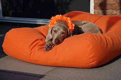 Dog's Companion® Hundebett Orange Medium