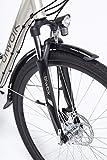 Zoom IMG-2 bicicletta elettrica biwbike malmo