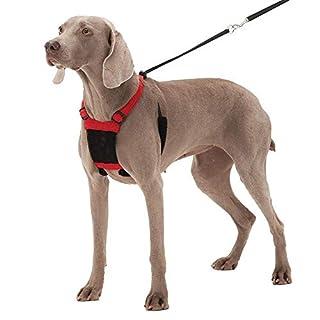 SPORN No-Pull  Dog Harness, Mesh, Red, Large/X-Large (B002AV3NGA)   Amazon price tracker / tracking, Amazon price history charts, Amazon price watches, Amazon price drop alerts