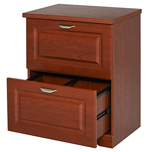 HOMCOM Wood 2-Drawer Lateral File Cabinet Organizer with File Hooks and Spacious Tabletop Display for Home Office, Brown