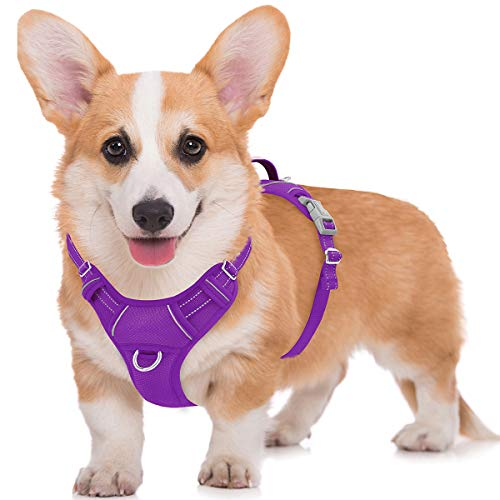 BARKBAY No Pull Dog Harness Large Step in Reflective Dog Harness with Front Clip and Easy Control Handle for Walking Training Running with ID tag Pocket(Purple,M)