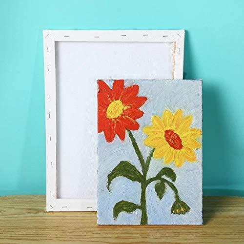 lienzos para pintar cuadros, Disponible en Varias Medidas, Lienzo blanco para Oleo y Pintura Acrilica | Lienzos para pintar listos para usar. (1 UNIDAD DE 73X60CM)